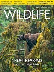 National Wildlife magazine subscription